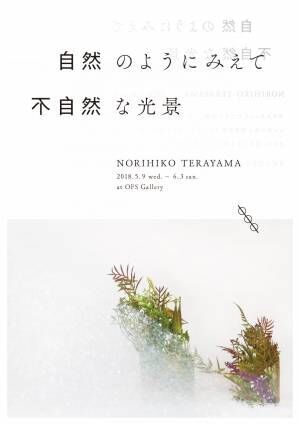 デザイナーで作家の寺山紀彦による展示「自然のようにみえて不自然な光景」、白金OFS galleryにて開催