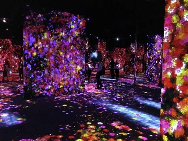 チームラボのデジタルアートミュージアム、シャネルイベント、間もなく終了の落合陽一展etc...今週末何する? 【気になるTopics】
