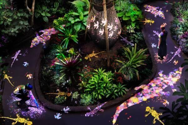 チームラボ、京都の下鴨神社と山口・宇部市の植物館を夜間限定でデジタルアート空間に!