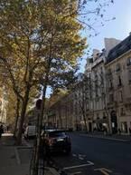 名店、新店、職人 パリで和菓子に出会う【CHAPTER.5:パリのいまどきカフェめぐり】