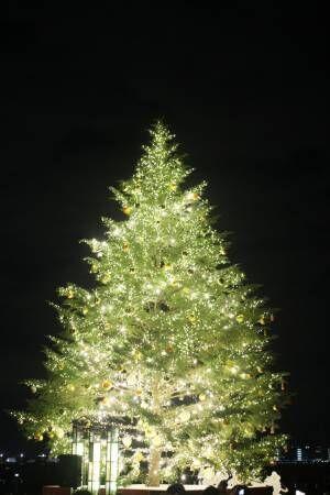 今週末はクリスマス! 2018年クリスマスに楽しめる情報をお届け【気になるTopics】
