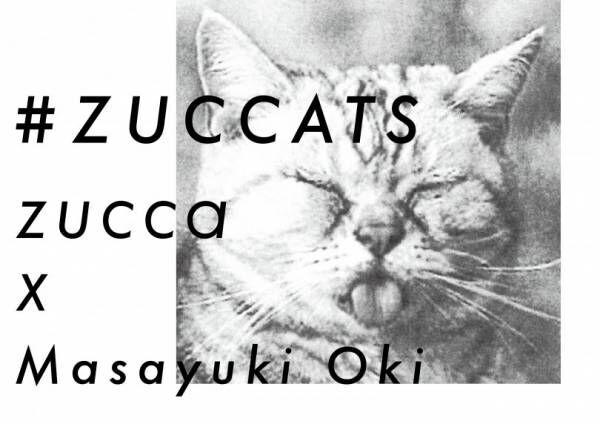 ズッカ、『必死すぎるネコ』の沖昌之とコラボ! 新宿伊勢丹のポップアップでは限定アイテムを販売