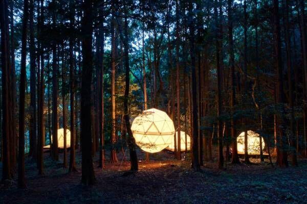 オールナイト野外映画フェス「夜空と交差する森の映画祭」。今年は泊まれる公園「INN THE PARK」にて開催