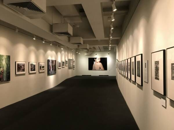 山口百恵からギャングの素顔まで圧巻の790点、「立木義浩1959-2019写真展」上野で開幕