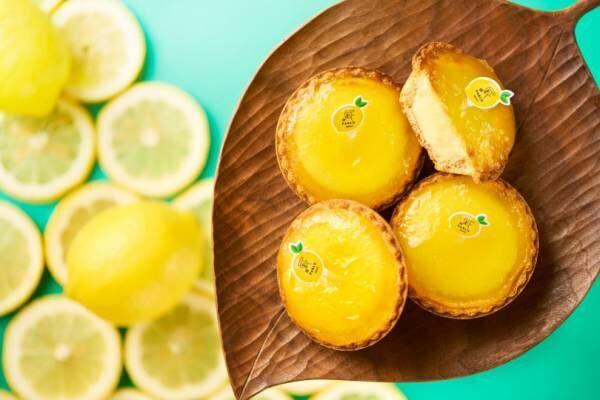 パブロミニから、瀬戸内レモンを使用した爽やかな香り広がる新作タルトが登場!