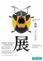 佐藤卓ディレクションの「虫展 −デザインのお手本−」、六本木21_21 DESIGN SIGHTで開催