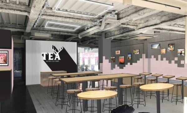 LA発タピオカミルクティーが人気のアルフレッド・ティー・ルーム、原宿に新店オープン!