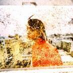 米津玄師やあいみょんのMVを手掛ける山田智和の初個展が伊勢丹メンズで開催