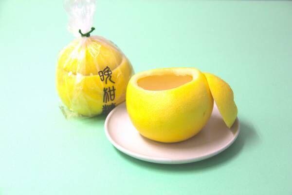 グレープフルーツをまるごと使ったフレッシュな涼菓、老松の晩柑糖【絶対喜ばれる! 夏の手土産 】