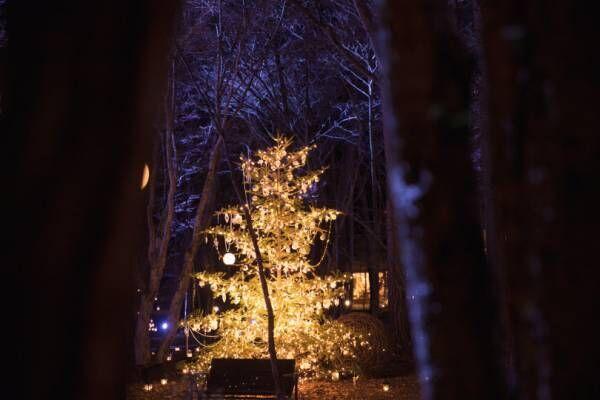 「軽井沢高原教会 星降る森のクリスマス 2019」ランタンキャンドルが照らす冬夜の森で【レポート】