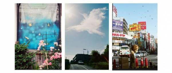 自宅で楽しむ銀座 蔦屋書店、森洋史や川島小鳥ら多数のアート作品をオンライン公開中