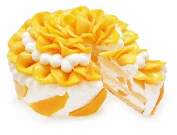 カフェコムサ、7月は旬の沖縄県産完熟マンゴーを使用したショートケーキを限定展開