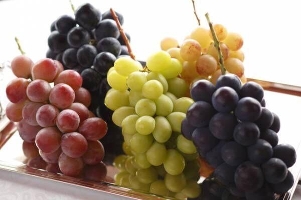 葡萄イメージ