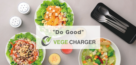 VEGE CHARGER