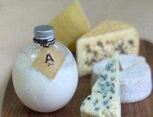 11月11日は「チーズの日」。大丸東京店で手に入るチーズケーキ9選
