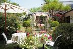 あざみ野うかい亭、80種のバラ香る庭園で春の鉄板メニュー - ローズティーやデザートも