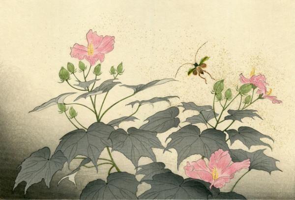 江戸の浮世絵に学んだ立原位貫、matohu表参道本店で展覧会 - 木版画で日本の美に触れる