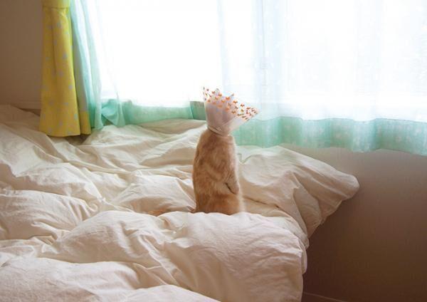 「ねこ休み美術館」東京・大阪・札幌で開催 - スター猫が名画とコラボ、「ねこ休み展」参加作家が勢揃い
