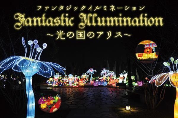福井・芝政ワールドが「ファンタジックイルミネーション〜光の国のアリス〜」開催 - 屋内型で北陸最大級