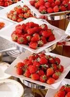 横浜ベイホテル東急のデザートブッフェ「いちごジャーニー」新鮮いちごの食べ比べなど
