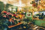 """植物がテーマの""""ボタニカル蚤の市""""が渋谷で開催 - 雑貨・洋服・アート・食品など"""