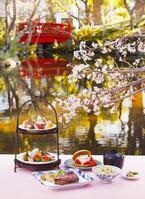 ホテルニューオータニの桜メニュー、57本の桜が咲き誇る日本庭園×春の味覚