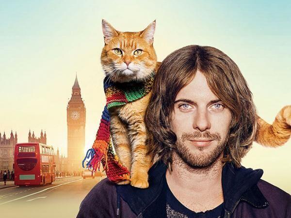 映画『ボブという名の猫 幸せのハイタッチ』どん底ミュージシャンと野良猫、心温まる奇跡の友情物語