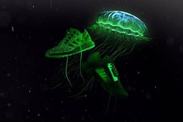 アディダスから暗がりで光を放つコラボスニーカー、「世界一危険なクラゲ」モチーフ