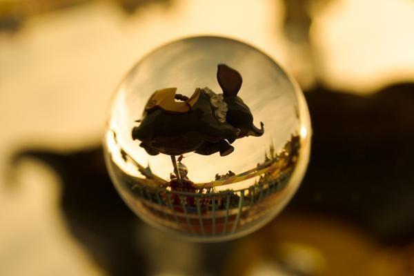 """ディズニーの写真展「イマジニング・ザ・マジック」パーク内で起きた""""魔法の瞬間""""を捉えた写真"""