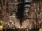 「丸の内イルミネーション2017」シャンパンゴールドに輝く200本超え街路樹が街並みを華やかに演出