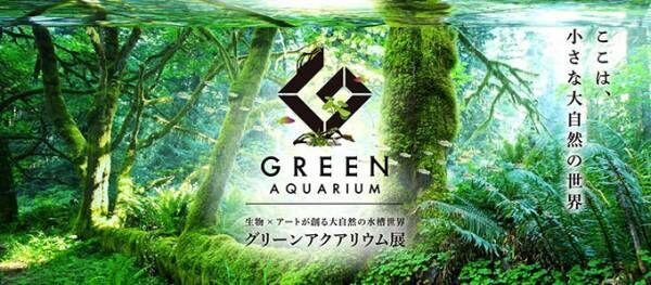 生物×アートで創る自然の水槽世界「グリーンアクアリウム展」がグランツリー武蔵小杉で開催