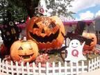 富士急ハイランドのハロウィン、戦慄迷宮の亡霊パレードや限定メニュー - 仮装で入園料が無料に