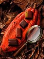 パティシエ エス コヤマの新作チョコレート - 苺&ふきのとうのガナッシュなど4種