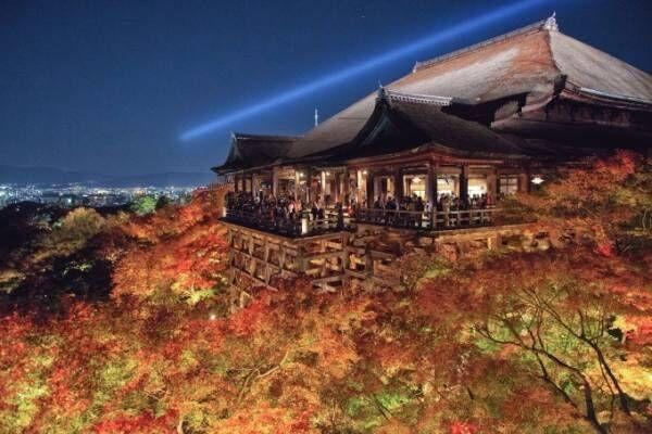 音羽山 清水寺「秋の夜の特別拝観」紅葉の一大名所を、約500基の照明が幻想的にライトアップ