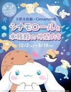 京都水族館でシナモロールとのコラボイベント、ふわふわ生物の展示やコラボカフェ
