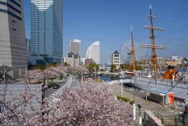 「ガーデンネックレス横浜 2018」開催、みなとみらいや山下公園が春の花々で彩られる