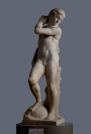 「ミケランジェロと理想の身体」国立西洋美術館で、日本初公開《ダヴィデ=アポロ》など作品約50点