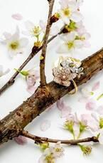 ナチュア & ニコライ バーグマン新作ジュエリー「チェリー ブロッサム」桜のリングやネックレス