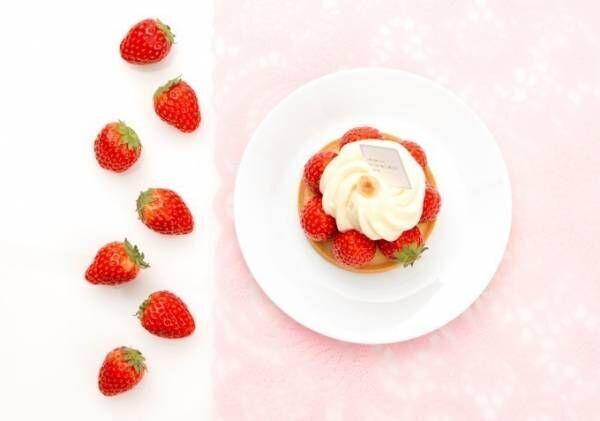 サダハル・アオキの春スイーツ - フレッシュ苺&クリームのケーキや桜クリームのエクレア