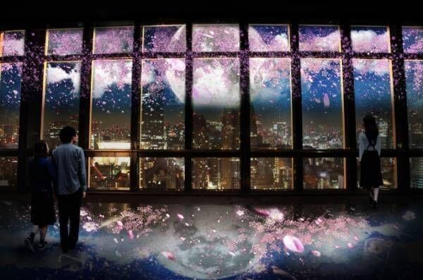 東京タワーで夜桜を鑑賞「ネイキッド」が手掛ける桜×夜景のプロジェクションマッピング