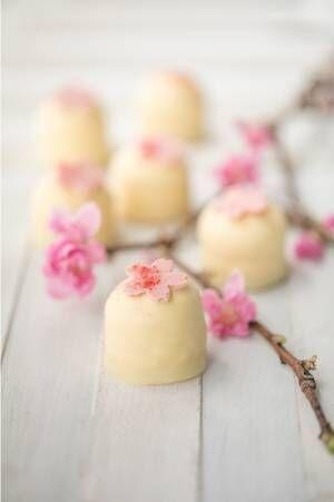 デンマーク発サマーバード オーガニック、ストロベリー×桜の甘酸っぱい春限定チョコ