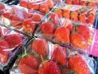 """赤坂アークヒルズで苺マルシェ - 産地直送の新鮮イチゴや加工品販売、""""利きイチゴ""""も"""