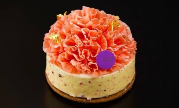 カーネーションが咲く「母の日ケーキ」レアチーズ×ベリー、ホテル インターコンチネンタル 東京ベイから