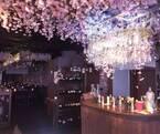 「桜キャンドルナイト」渋谷で開催 - 桜3000本の中でインドア花見、時間無制限で飲み放題