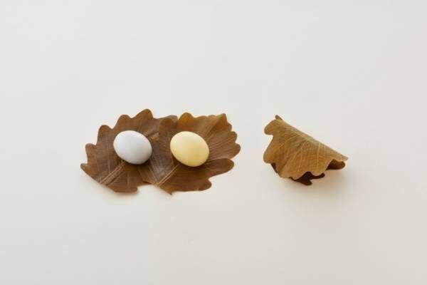 「とらや」端午の節句にむけた和菓子、もちもち食感の柏餅&爽やかな笹の葉が香る粽