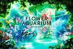 「フラワーアクアリウム バイ ネイキッド」水族館アクアパーク品川で開催、花が彩る海の世界を体験