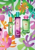 ジョー マローン ロンドン、ブラジルのフルーツマーケットから着想を得た新香水「ホット ブロッサムズ」