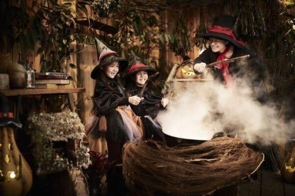 星野リゾート  リゾナーレ熱海がハロウィンイベント「魔女の魔法レッスン」を開催 - くすの木ライトアップなど