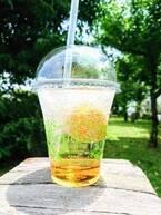 チョーヤ梅酒、希少な梅の実とフローズン梅のソーダを提供する限定ストアを表参道に