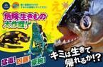 すみだ水族館「危険な生きもの大作戦!」、強力な毒を持つヤドクガエルなど全8種類を展示